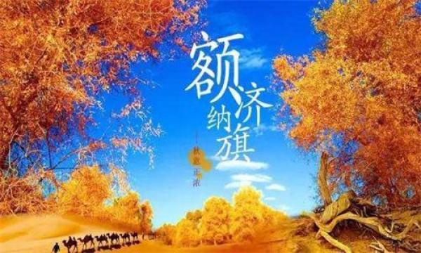 相逢胡杨林、夜观大漠胡杨、秘境老人湖、圆梦航天城双飞双卧五日游